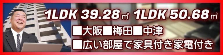 梅田 大阪 家具付きの広い1LDK